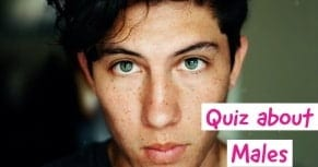 quiz about men