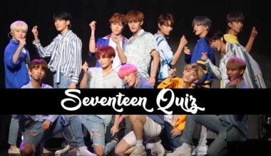 seventeen quiz